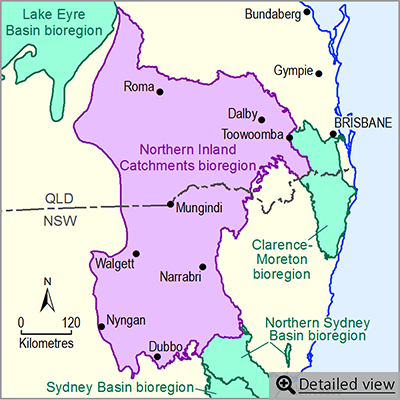 Thumbnail map of the Northern Inland Catchments bioregion. Click image to view detailed map.