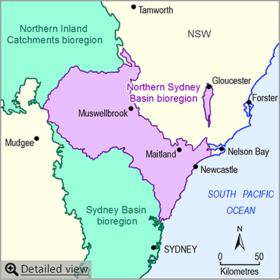 Thumbnail map of the Northern Sydney Basin bioregion. Click image to view detailed map.