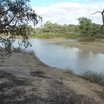 Cooper Creek near Innamincka, SA, 23 May 2013 Credit: Dr Anthony Budd, Geoscience Australia