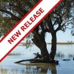 Cooper subregion new release
