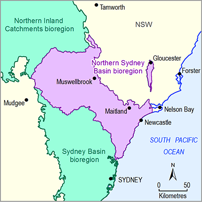 Thumbnail of the Northern Sydney Basin Bioregion