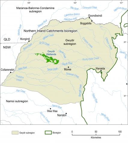 Map of the Gwydir subregion