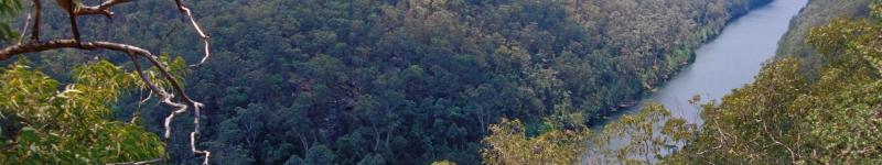 Photograph of Nepean Gorge, Mulgoa, in the Sydney Basin bioregion