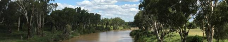 Maranoa River near Mitchell QLD Credit: J. Constable, 2015 Commonwealth of Australia 2015 cc by 3-0